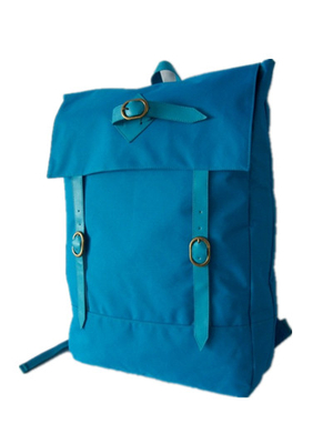 Fashional Polyester Outdoor Backpack Traveling Bag Sy-13015#